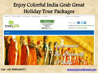 Enjoy Colorful India Grab Great Holiday Tour Packages