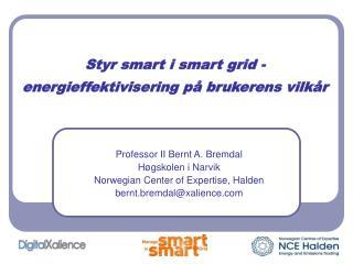 Styr smart i smart grid - energieffektivisering p  brukerens vilk r