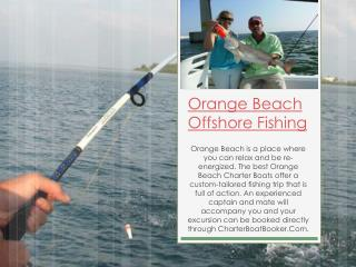Orange Beach Deep Sea Fishing