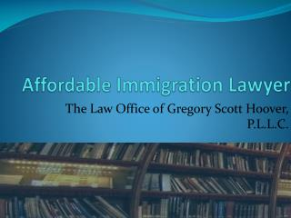 Affordable Immigration Lawyer