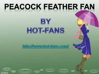 Peacock Feather Fan By Hot-Fans