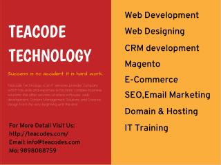 Software Development Company In Vadodara