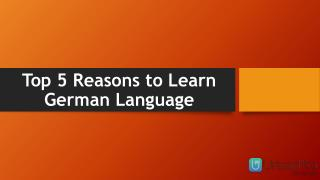 Top 5 Reasons to Learn German Language