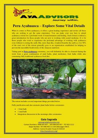 Peru Ayahuasca – Explore Some Vital Details