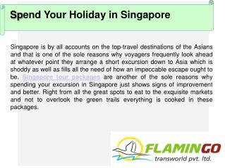 Spend Your Holiday Vacation with Singapore Tour Packages