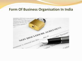 Form Of Business Organisation In India