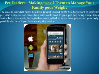 Pet Feeders - Making use of Them to Manage Your Family pet's Weight