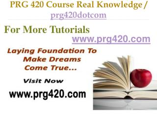 PRG 420 Course Real Tradition,Real Success / prg420dotcom