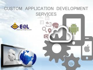 Custom Application Development Services| Warehousing Management System