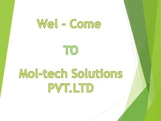 Web Development Company Gandhinagar | IT Services Provider| Mol-tech