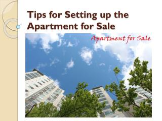 Tips for Setting up the Apartment for Sale