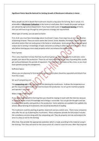 Mushroom Consultancy |  Mushroom Machinery
