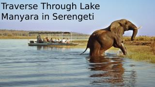 Traverse Through Lake Manyara in Serengeti