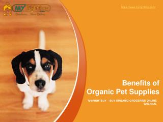 Benefits of Organic Pet Supplies and Organic Dog Food