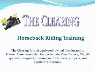 Horseback Riding Training