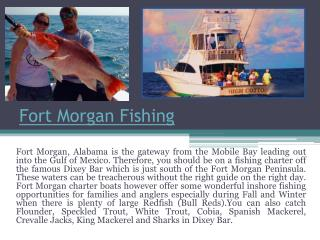 Fort Morgan Deep Sea Fishing