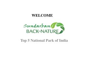 Know Top 5 National Park in India