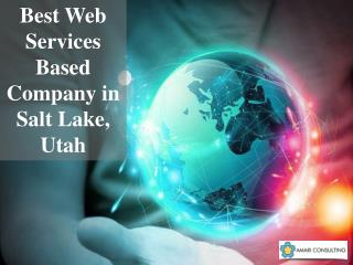 Best Web Services Based Company in Salt Lake, Utah - Amari Consulting