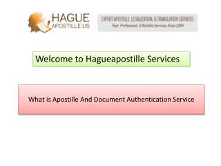 What is Apostille Service - hagueapostille.us