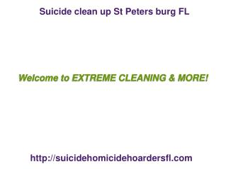 Hoarders Clean Up Clear water FL