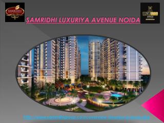 Samridhi Luxuriya Avenue Noida Sec-150
