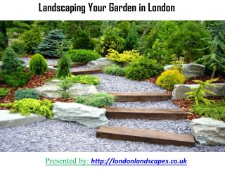 Landscaping Your Garden in London