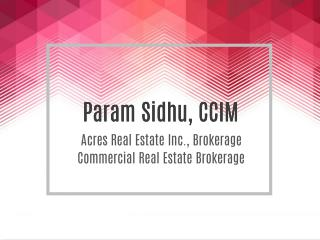 Param Sidhu, CCIM | Commercial Real Estate Brokerage
