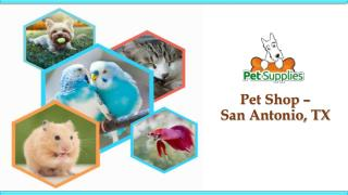 Pet Shop – San Antonio, TX
