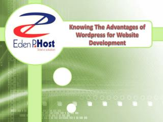 Knowing The Advantages of Wordpress For Website Development