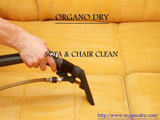 Expert organic sofa and chair cleaning | Cleaning servivces in Delhi & NCR