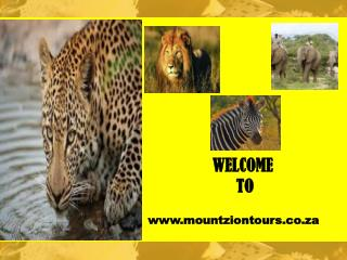 Kruger National Park Family Safaris