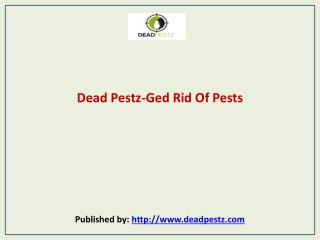 Dead Pestz-Ged Rid Of Pests