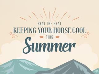 Beat the Heat | Keeping Your Horse Cool This Summer