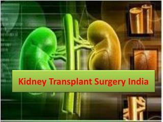 Kidney transplant surgery india