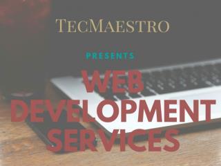 Web Development Services-TecMaestro