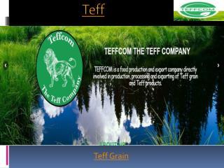 Teff Seeds