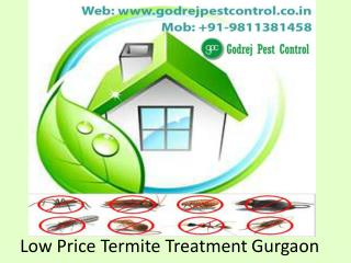 Low Price Termite Treatment Gurgaon Call 9811381458