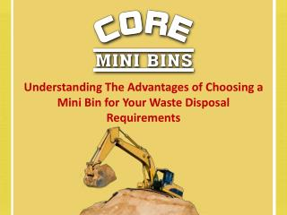 Understanding The Advantages Of Choosing A Mini Bin For Your Waste Disposal Requirements