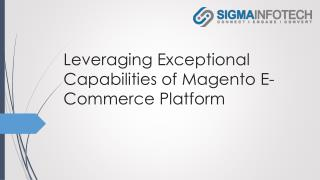 Leveraging Exceptional Capabilities of Magento E-Commerce Platform