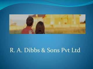 RA Dibbs - Pest Control & Building Services Brisbane
