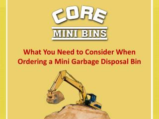 What You Need To Consider When Ordering A Mini Garbage Disposal Bin