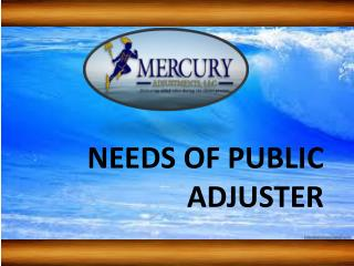 Needs of Insurance Adjusters