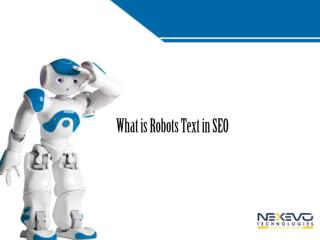 What is Robots Text in SEO
