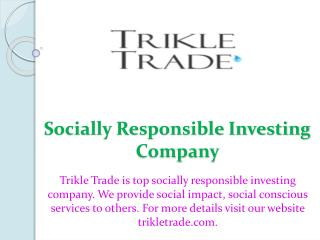 Socially Responsible Investing Company