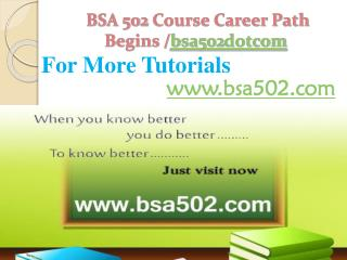 BSA 502 Course Career Path Begins /bsa502dotcom