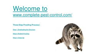 Pest Control San Francisco CA, Exterminator San Francisco CA, Rodent Control San francisco CA