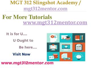 MGT 312 Slingshot Academy / mgt312mentor.com