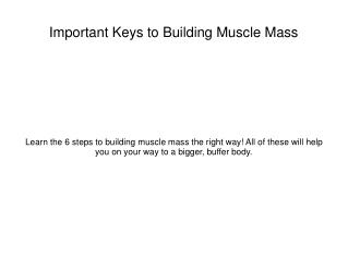 The 5 Keys to Muscle Weight Gain
