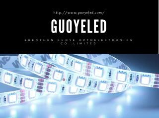 LED Flexible Strip Light and Lamp | ShenZhen Guoye Optoelectronics Co. Limited