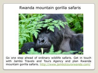 Rwanda mountain gorilla trekking